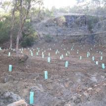 tinderbox quarry 002